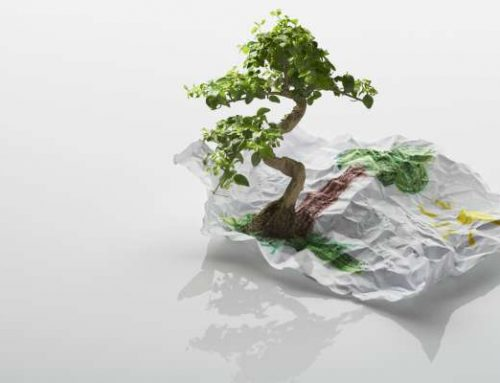 Benefits of Eco-Friendly Promotional Products