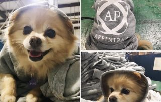 Affinipay dog shirts